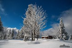 Sa., 23.01.16: Fotokurs Landschaftsfotografie - Winter auf dem Wurmberg, Harz
