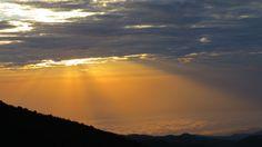 Sun shining down on the sea of clouds! (Horombo Hut on the way to Mt Kilimanjaro) Kilimanjaro, Sunshine, Clouds, Sea, Celestial, Sunset, Nature, Outdoor, Beauty