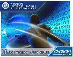 Conozca nuestro Curso Introduccion al sistema SAP