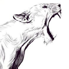 Montag& yawning from Lucky Jackson. Nice, I will not vi .- Montag's Gähnen von Lucky Jackson. Schön, ich werde nicht viel im Fresko sehen oder Montag& yawning from Lucky Jackson. Well, I will not see much in the fresco or … – the - Animal Sketches, Animal Drawings, Cool Drawings, Tattoo Drawings, Pen Sketch, Drawing Sketches, Lion Drawing, Drawing Ideas, Sketching