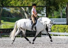 How Do I Get a More Elastic Trot with My Dressage Horse? FEI dressage judge Sandy Hotz offers advice on how to make a horse's trot more elastic. Horse Riding Tips, My Horse, Horse Love, Horse Tips, Parkour, Horse Exercises, Dressage Horses, Draft Horses, Equestrian Outfits