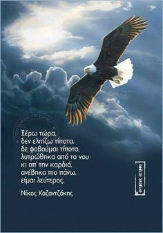Passion Quotes, Greek Quotes, Positive Thoughts, Wisdom Quotes, Bald Eagle, Animals, Life, Image, Animales