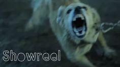 Lo que me gusta en Vimeo