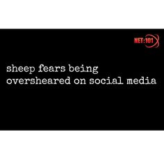 #parody #satire #humour #sheep #net101 #socialmedia