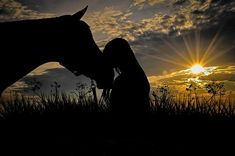 Pictures With Horses, Horse Photos, Horse Girl Photography, Equine Photography, Cavalo Wallpaper, Foto Cowgirl, Photo Café, Horse Wallpaper, Horse Love