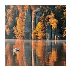 CHKO Český ráj - podzimní Věžický rybník (foto: Tomáš Morkes)