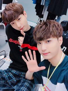 Jin + Been