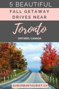 Five beautiful autumn roads from Toronto - Destination vacances été 2019 Ontario Travel, Toronto Travel, Backpacking Canada, Canada Travel, Ontario Place, Canada Holiday, Visit Canada, Where To Go, Day Trips