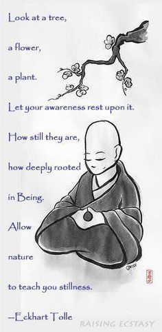 Look at a tree, a flower, a plant. Let your awareness rest upon it. How still they are, how deeply rooted in Being. Allow nature to teach you stillness. -Eckhart Tolle Loved and pinned by http://www.shivohamyoga.nl/ #buddha