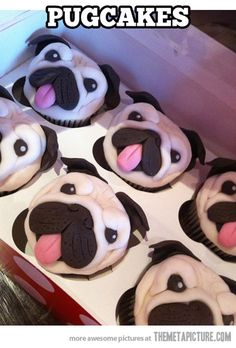 Pug Cupcakes…  Don't quite know how i feel about these,they are however, unbelievably cute