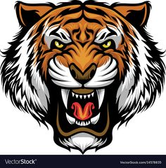 Illustration about Vector of angry tiger face. Illustration of cartoon, aggressive, life - 70770388 Tiger Illustration, Tiger Drawing, Tiger Art, Tiger Head, Tribal Tiger, Tiger Vector, Vector Art, Art Tigre, Tiger Tattoodesign