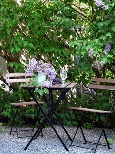 Syrener i full blom! TÄRNÖ bord och stolar, SKURAR kruka med årets första syrenkvistar, ARV assiett, POKAL vinglas.