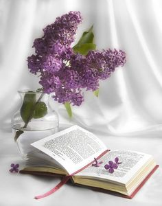 ✨   We're not always going to understand why something happens. True faith is trusting even when it doesn't make sense. ღ Joel Osteen