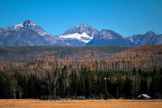 Montana's diverse terrain creates varied climate patterns across the state. The eastern region, for example, sees harsher winters and hotter summers, with Best Homeowners Insurance, Insurance Companies, Montana, Travel, Simple, Flathead Lake Montana, Viajes, Destinations, Traveling