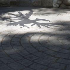 Shadow art.   University of Phoenix