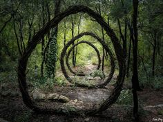 Artist Spencer Byles Spent A Year In The Woods Creating Mysterious Sculptures