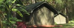 Welcome to Tamborine Mountain Caravan Camping