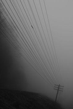 Misty morning | Mykulychyn | Ukraine