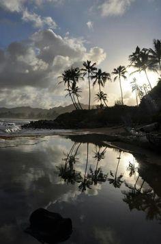 Kauai. Very relaxing. First time to Hawaii was the island of Kauai and I fell in love.