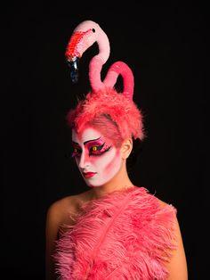 Los flamencos (Phoenicopterus roseus) utilizan las secreciones de sus glándulas uropigiales como maquillaje, para acentuar su colorido y volverse así más atractivos a la hora de encontrar pareja.
