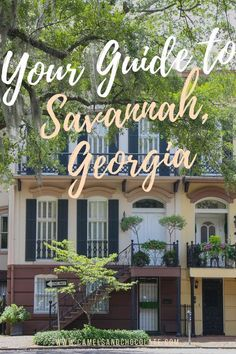 Savannah is a beloved gem among Southerners and it should be the first stop you make on any Southern road trip. This historic Georgia city of weeping oaks is full of fun things to do (and delicious things to eat) and after a number of visits to Savannah, I have put together the perfect weekend itinerary to help you fall in love with the city like I did. Click through to see my weekend guide to Savannah, Georgia   Camels and Chocolate #savannah #georgia #weekendguide