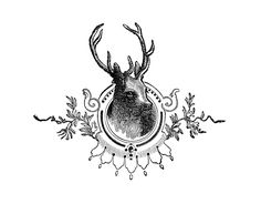 Vintage Christmas Image - Deer Head Engraving - The Graphics Fairy