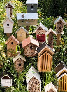 Tuintrends 2013  rust en klein geluk     In de trendtuinen van 2013 valt volop te genieten: van de vlinders die boven de bloemrijke borders fladderen en de mogelijkheid om met je handen in de grond te wroeten… De tuin is natuurlijker dan ooit. De tuintrends zijn opvallend groen en geven ruim baan aan bijen, vlinders en andere insecten. Laat je verrassen en inspireren door de 'Let me glow garden' en de 'Be happy garden'.   http://www.wonenwonen.nl/tuinieren/tuintrends-2013/5745