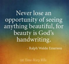 """Never lose an opportunity of seeing anything beautiful, for beauty is God's handwriting."" - Ralph Waldo Emerson"