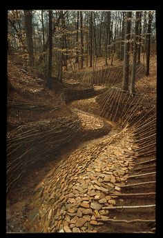 Streampath 1 by dylanwolfe, via Flickr
