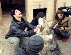 Here is the photo of Crystal Reed, Tyler Posey and Holland Roden playing with a real life, wolf. But what is the real wolf for? Is there going to be a total transformation of human to wolf ? Check out the photo here below! Teen Wolf Dylan, Teen Wolf Cast, Dylan O'brien, Teen Wolf Tattoo, Teen Wolf Season 3, Teenage Werewolf, Mtv Shows, Teen Wolf Funny, Cody Christian
