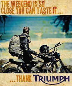 Great Triumph ad Triumph Scrambler, Triumph Motorcycles, Vintage Motorcycles, Triumph Bonneville, Scrambler Motorcycle, Triumph Motorbikes, Harley Davidson, Ferrari, Side Car