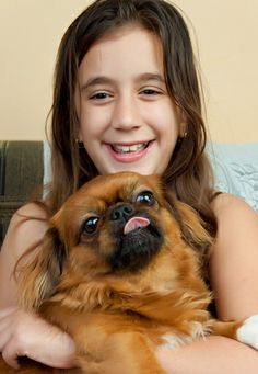 Here's a Healthy Treat for your Pekingese: Sweet Potatoes! http://www.pekinews.com/sweet-potato-dog-treat-is-it-healthy-for-your-pekingese/