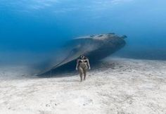 This is a photograph taken by the award- winning underwater photographer Jason W. - This is a photograph taken by the award- winning underwater photographer Jason Washington and this - Under The Water, Under The Sea, Underwater Photographer, Underwater Photos, Underwater Shipwreck, Underwater Model, Great Photos, Cool Pictures, Funny Pictures