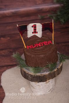 Lumberjack themed cake smash