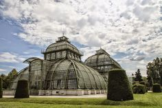 The Palmenhaus Schönbrunn is a large greenhouse in Vienna, Austria, consists out of 45 000 glass tiles  and is also among the largest botanical exhibits of its kind in the world, with around 4,500 plant species.