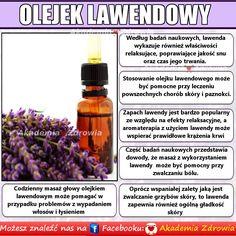 Korzyści zdrowotne olejku z lawendy - Zdrowe poradniki Osho, Beauty Tricks, Trends, Lifestyle, Nice, Health, Nature, Beauty Hacks, Naturaleza