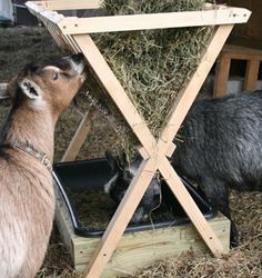 How to Build a Hay Feeder for Smaller Livestock - Farm and Garden - GRIT Magazine