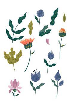 Flower Illustrations, Illustration Art, Botanical Flowers, Wedding Stationery, Wild Flowers, Wedding Flowers, Wedding Inspiration, Letters, Create