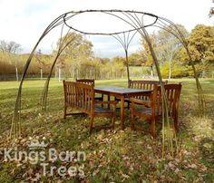 Living Willow Gazebo - available as DIY Kit! @ Kings Barn Trees