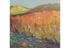 Sunlit Modesto Landscape