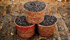 Últimamente  este fruto, denominado huasaí o acaí, se ha puesto de moda en el mundo gracias a sus propiedades. Contiene una gran cantidad de antioxidantes y se cree que es capaz de ayudar a adelgazar.
