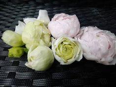 просто симпатичный цветочек из ХФ. МК от Риты - YouTube