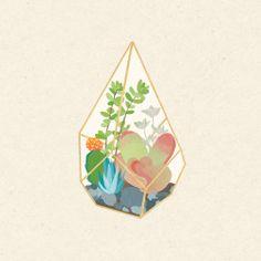 Resultado de imagem para terrarium illustration tumblr