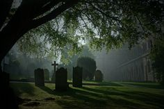Misty Morning,With St Albans Abbey St Albans, Past, Cathedral, Buildings, Country Roads, England, Community, Memories, Spaces