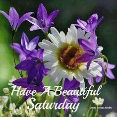 Happy Saturday! I hope you have a great weekend!! Relax and enjoy! #newday #happyweekend #weekendfun #havefun #beautifulday #goodlife #enjoy #weekend #Saturday
