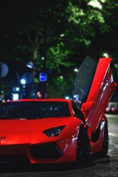 Lady Millionairess..Lamborghini