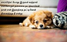 10 Best Tamil images in 2017 | Tamil language, Life lesson