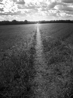 A long pathway
