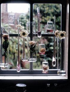 window treatment...  JR