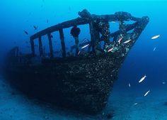 hawaiian ancient ship - Google Search